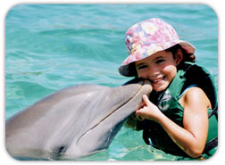 Dolphin Encounter family attractions