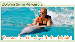 Cozumel Dolphin Swim Adventure